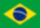 langfr-225px-Flag_of_Brazil.svg.png