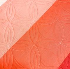 Rind/Orange Peel