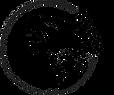 tribe logo transparent.png