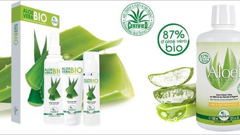 Aloe Vera bio: une mine de bienfaits déclinée par Frédéric M pour votre beauté et votre bien-être !