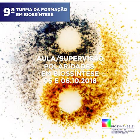 Aula Teórica / Supervisão Tema: Trabalhando com as polaridades em Biossíntese