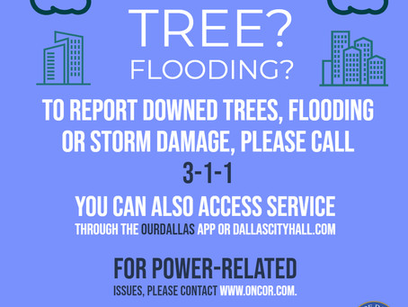 Report Flooding and Downed Trees after Oct 20th Storm