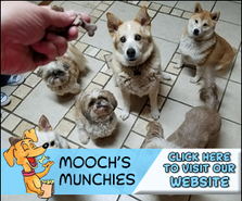 12651991_Mooch'sMunchies_300x250.png