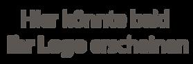 Platzhalter Logo.png