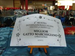 Quito di Mammagatta