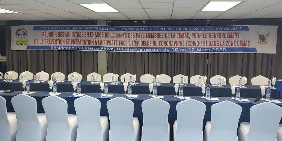 Réunion des Ministres en charge de la santé des pays membre de la CEMAC