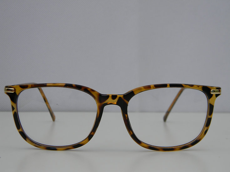 8079  -  BROWN TORTOISE
