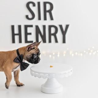 Henry-2.jpg