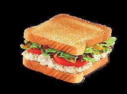 salada-de-frango.g.png