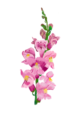 Floral Exploration, 2019
