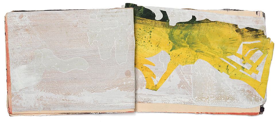 Artist Book Painting Drawing Collage On paper Daniel Alfacinha Mixed Media