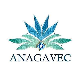 Anagavec