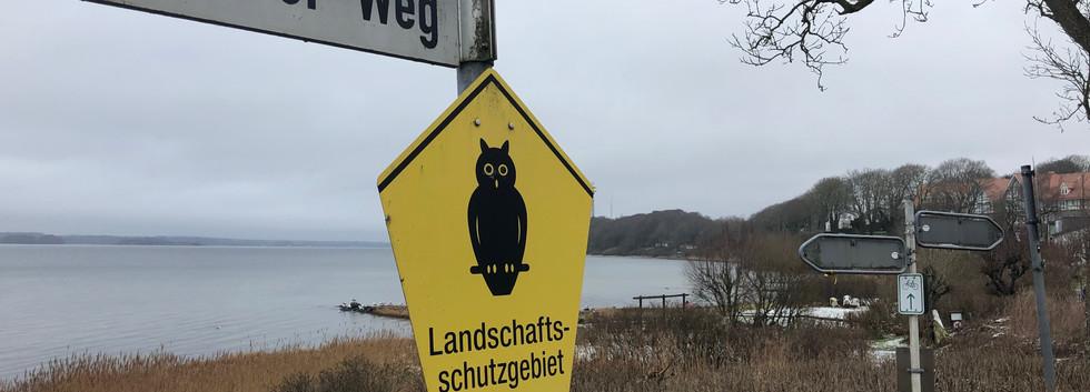 Das LSG Flensburger Förde