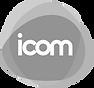 icomunicacao-logo_342bf1da_edited.png
