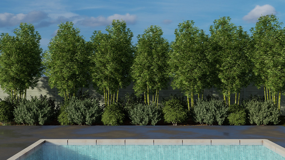 Image showing garden in Lumion. Image by The Lumion Collective.