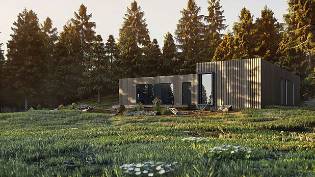 Axel House, Exterior Visualization of Sun Soaked Building and Forest Environment, Render by Ark Visuals