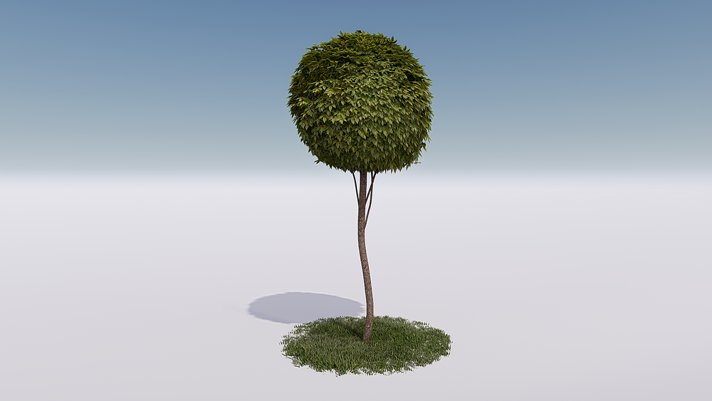 Image of Lumion Custom Boxwood Plant Created for Longwood. Render by The Lumion Collective
