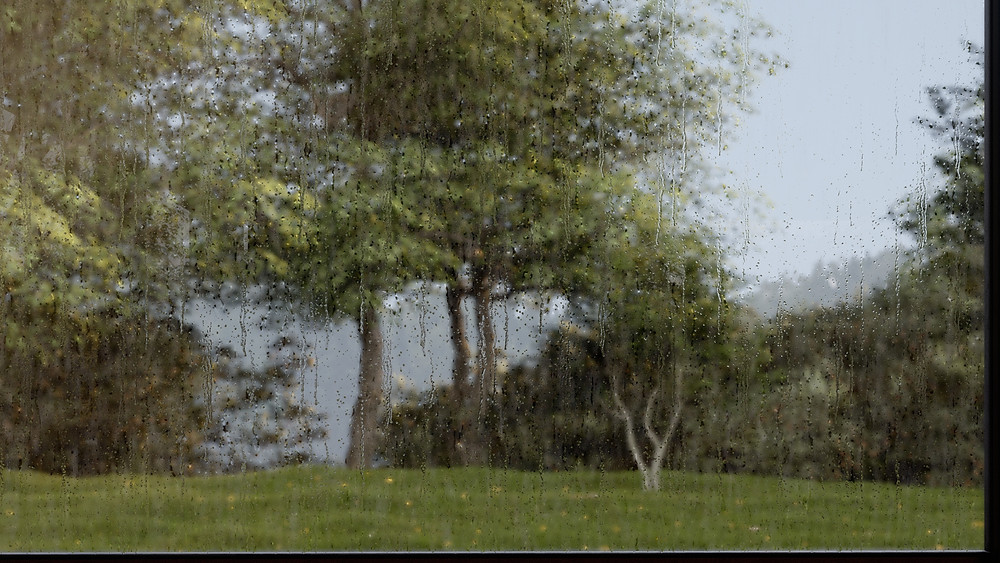 Rendering using Precipitation Effect in Lumion 11 by The Lumion Collective