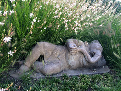 51 - garden impressions - Ganesh