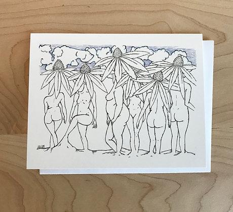 Coneflowers Blank Card