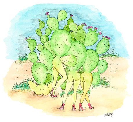 Prickly Ladies