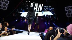 Punk Majesty Show 10.26.16 Web_Calibree-157.jpg.jpg