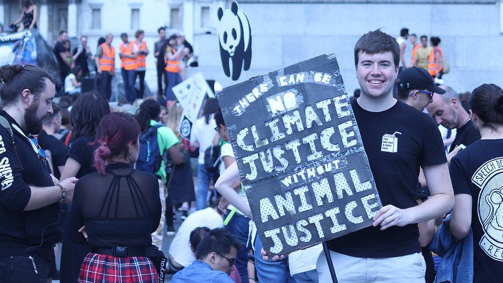 AnimalRightsMarch2019(2).jpg