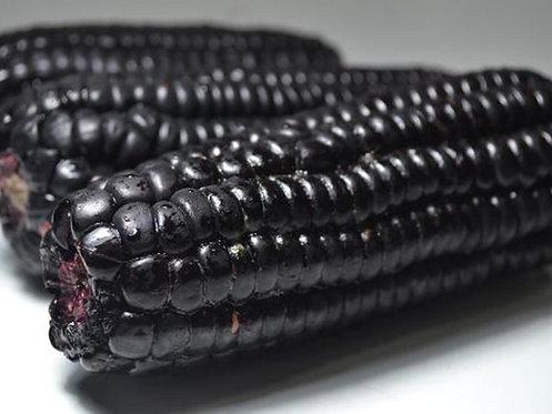 Maiz morado Dona Isabel
