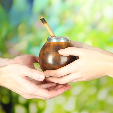 hands holding a yerba mate gourd in new zealand