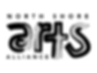 NSAA Logo 2.png