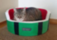 catbed5.jpg