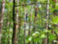 Emil und Jakob unterwegs in den Baumkron