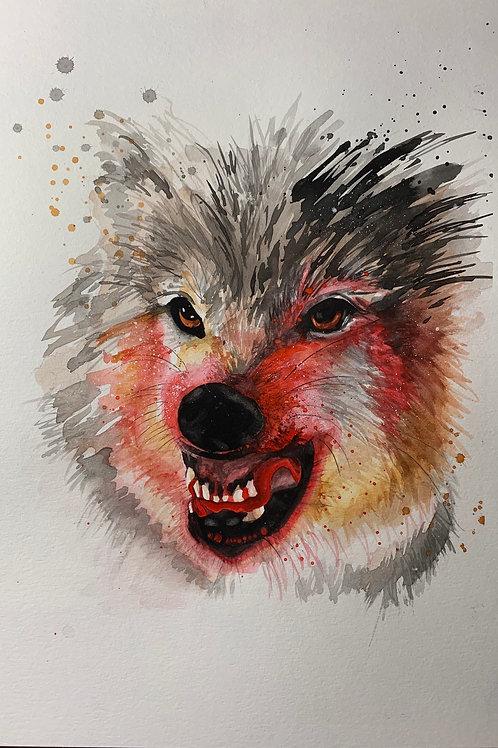 Angry Wolf Print