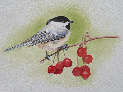 Chickadee & Cherries