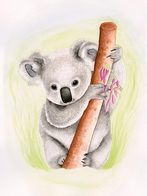 Koala Bear Print