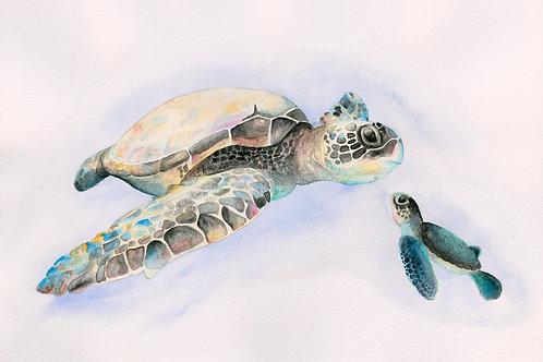 Sea Turtles Print