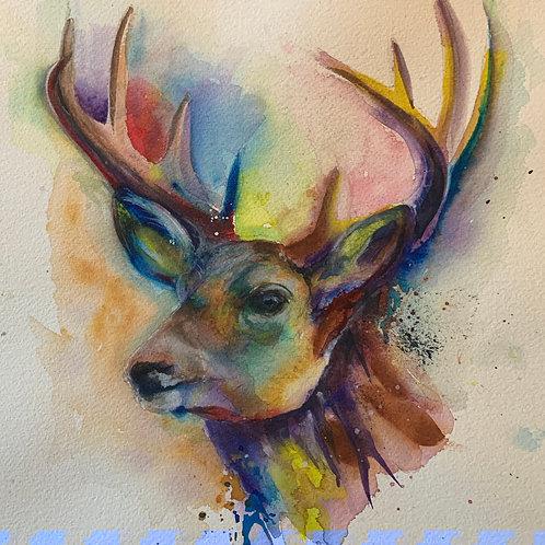 Rainbow Buck Print