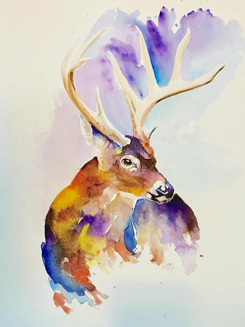 Dez' Buck