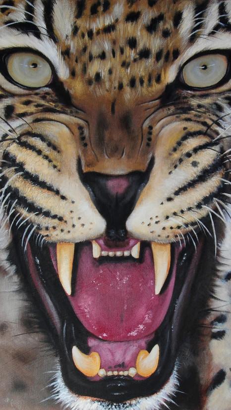 Leopard - Oils - SOLD