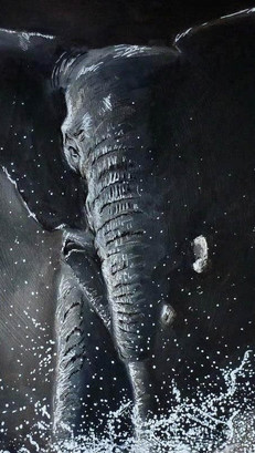 Elephant - Mixed Media
