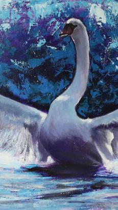 Swan - Mixed Media