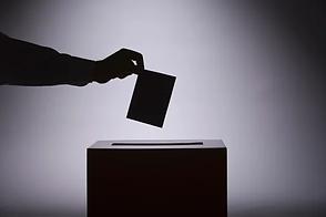 Voting image.webp