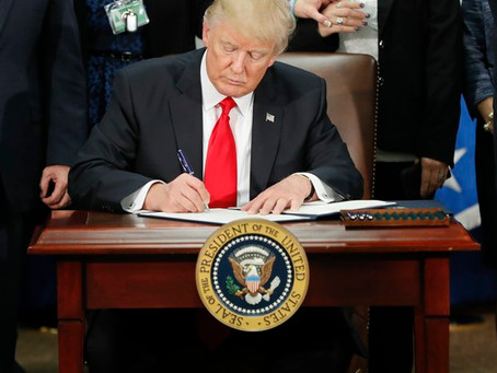 President Trump Signs Executive Order Halting Legal Immigration: Will You Be Affected?