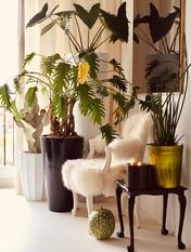 Green Decorum Styled Corners