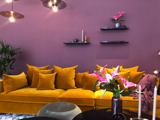 Colour Styled Urban Show Room