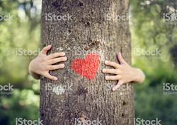 coeur arbre et mains