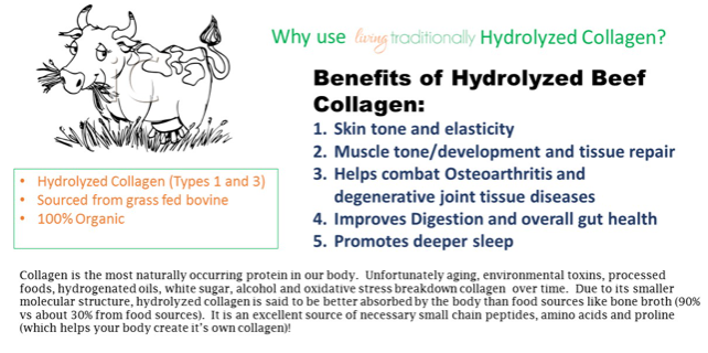 Hydrolyzed Collagen & why you need it