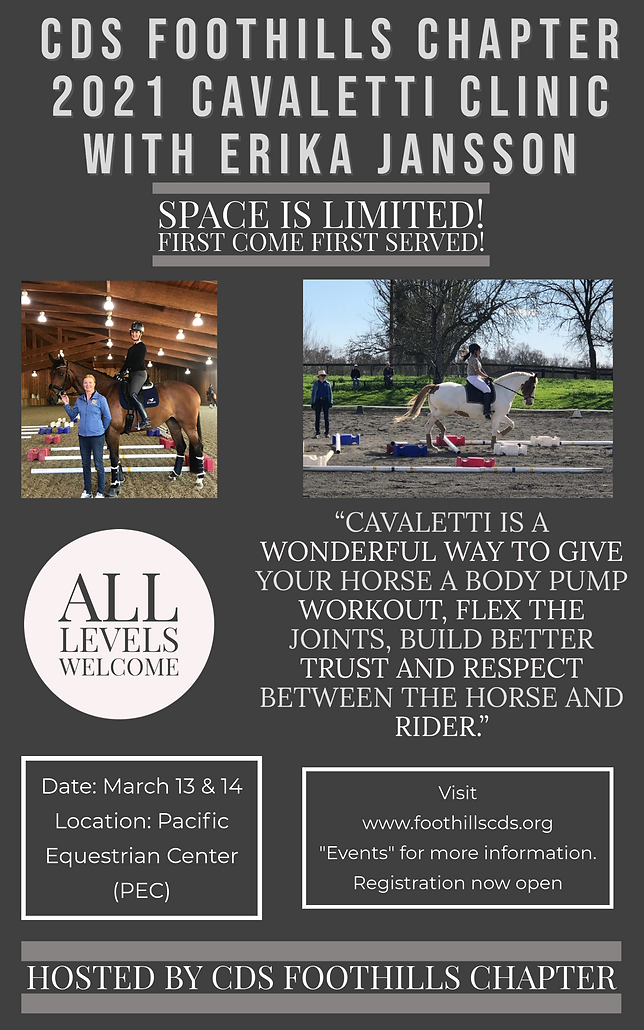 Cavaletti Clinic Flyer-1.png