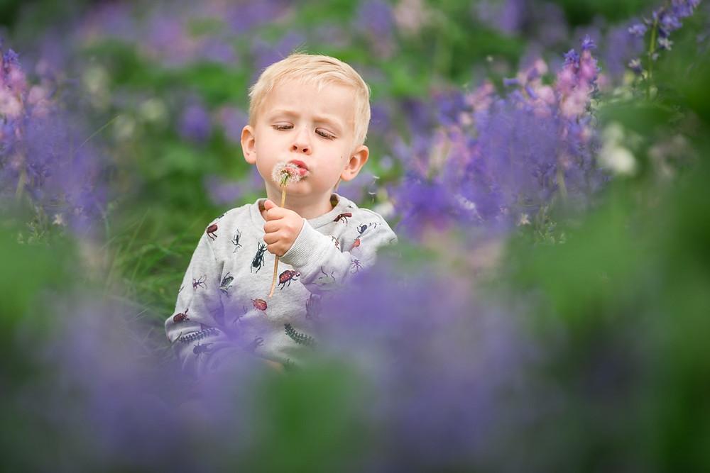aberdeen-children-family-photosession-boy-sitting-bluebells