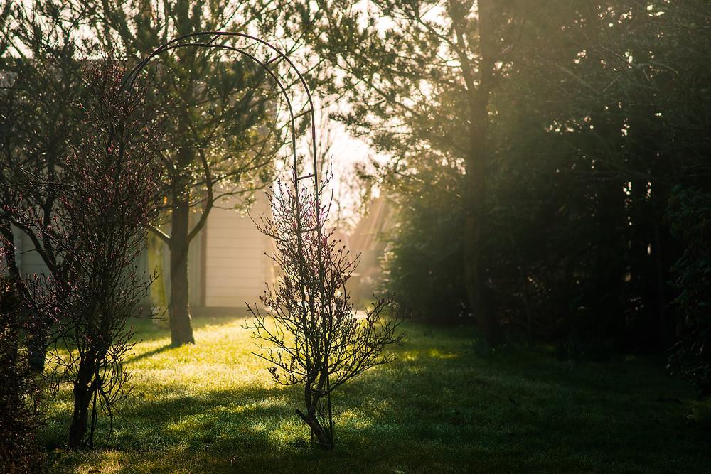 Best-aberdeen-family-children-photographer-montrose-arbroath-aberdeenshire-natural-light-beam